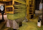 7. Baling: The hops are pressed into 200lbs bales, wrapped in burlap and hand stitched.