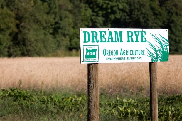 Oregon Rye