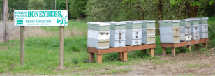 Honeybees Rogue Farms