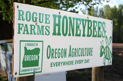 Rogue Farms Honeybees
