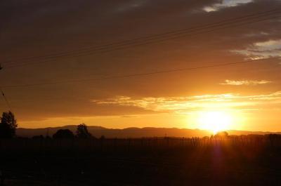Hopyard Sunrise