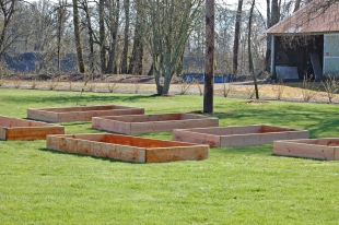 The completed raised beds.