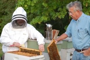 Bee Workshop 5.17.12 (22) web