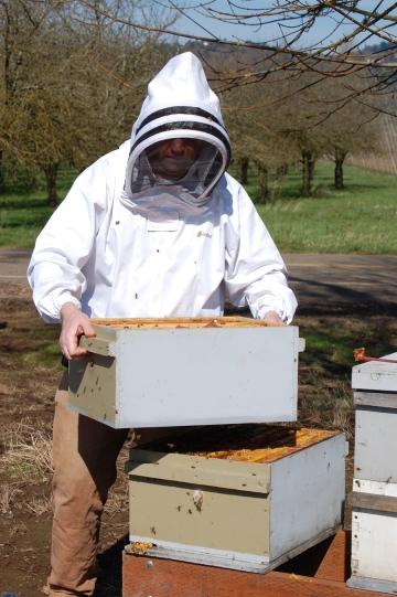 josh hive box