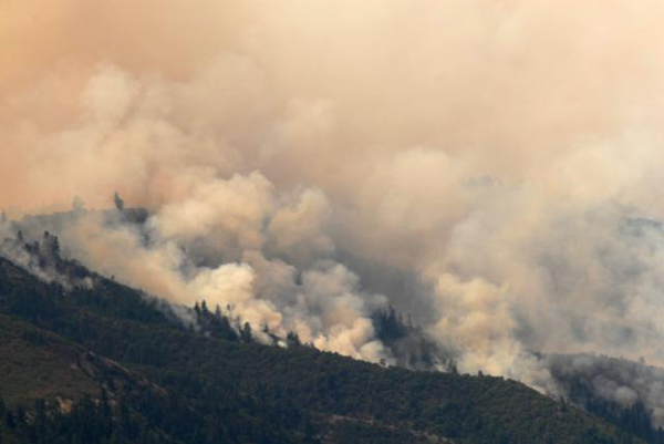 Blackburn Fire ODF Photo by Chris Friend