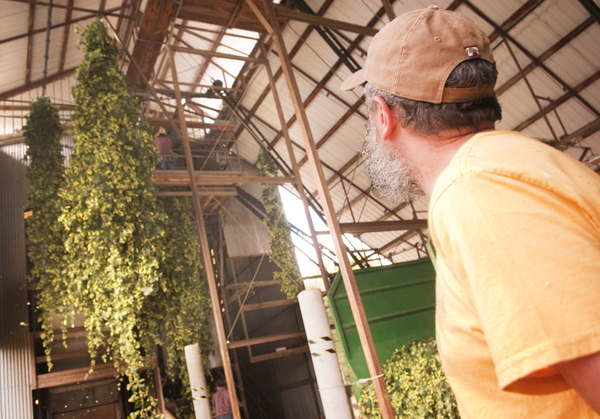 John Maier comes to the farm to select the Freedom hops he'll use to brew Wet Hop Ale.