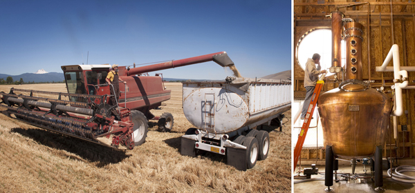 Left: John Maier harvesting the barley for Rogue Spirits at our farm in Tygh Valley, Oregon. Right: We distill our spirits in a handcrafted copper Vendome still at Rogue Spirits in Newport, Oregon.