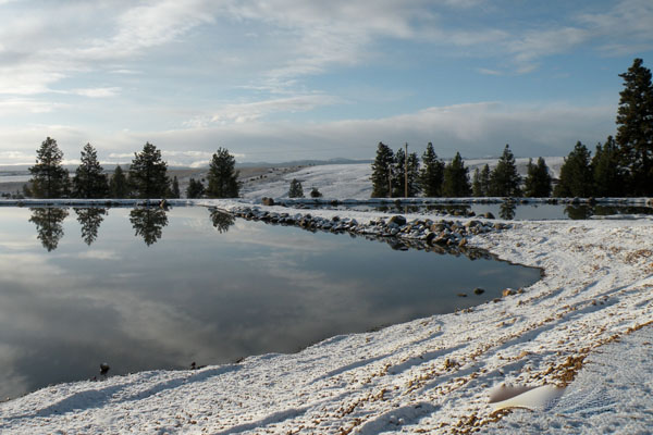 Some of the two dozen ponds at Rogue Farms In Tygh Valley, providing habitat for fish and wildlife.