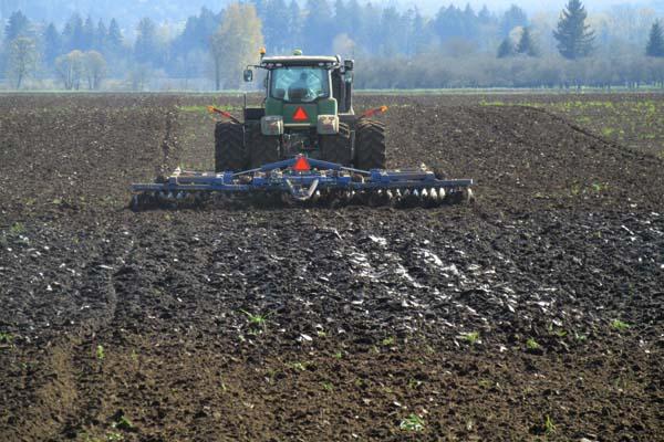 Plowing rye field