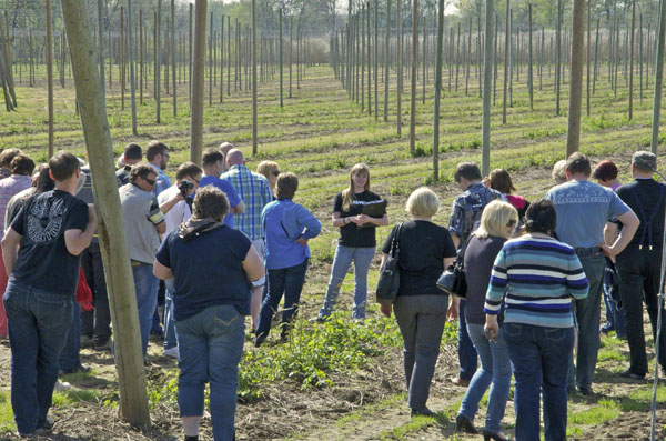 Learning about how Rogue Farms grows hops.