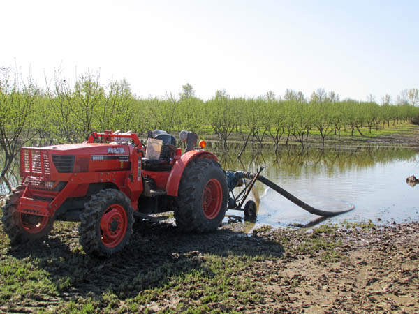 Pumping water from a flooded field in the hazelnut orchard.