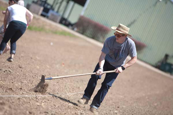 Planting Pumpkins 3