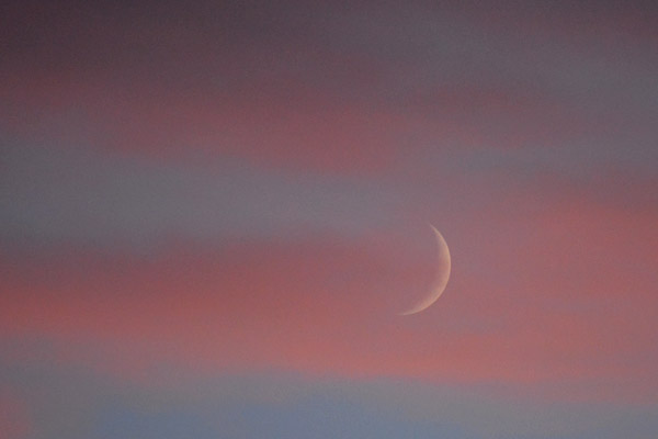 At the end of the day, a crescent Moon rises over the farm.