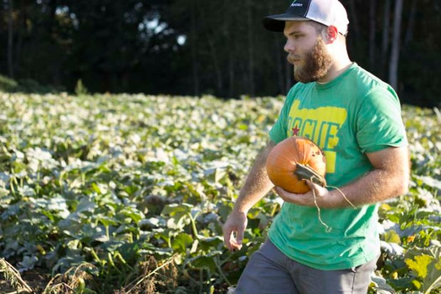 Pumpkin Picking_100114_029