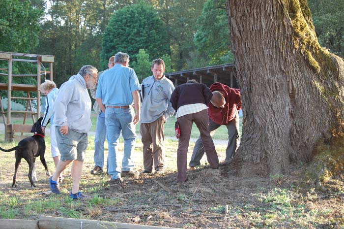 Learning how to locate a swarm at our beekeeping workshop in 2012.