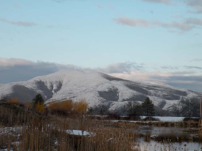 Tygh Ridge in winter.