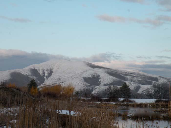 Tygh Ridge in winter.