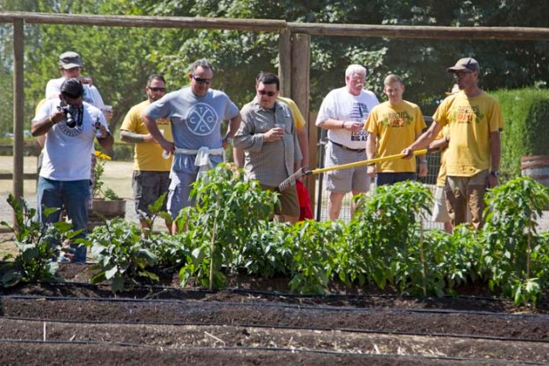 The Rogue Farms Revolution Garden where we grow vegetables and spices for our sodas and gins.