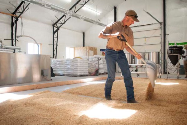 Each batch of Rogue Farms floor malt is steeped, germinated, flipped, raked and bagged by hand at our Farmstead Malt House in Tygh Valley, Oregon.
