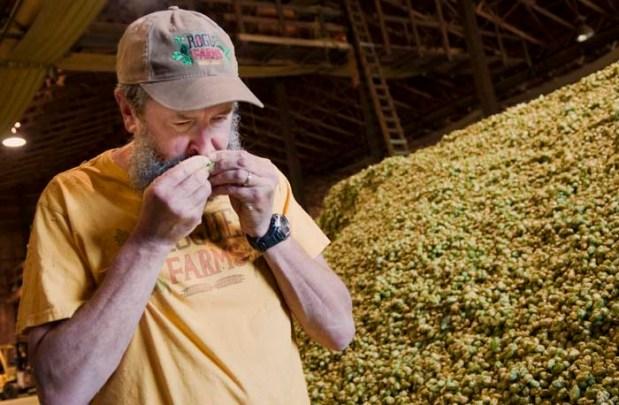 John smelling hops