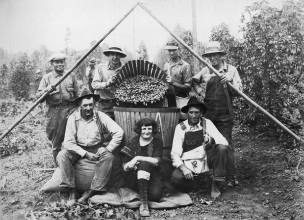 Hop pickers at the Wigrich Ranch circa 1928. Today this is the location of Rogue Farms of Independence, Oregon.