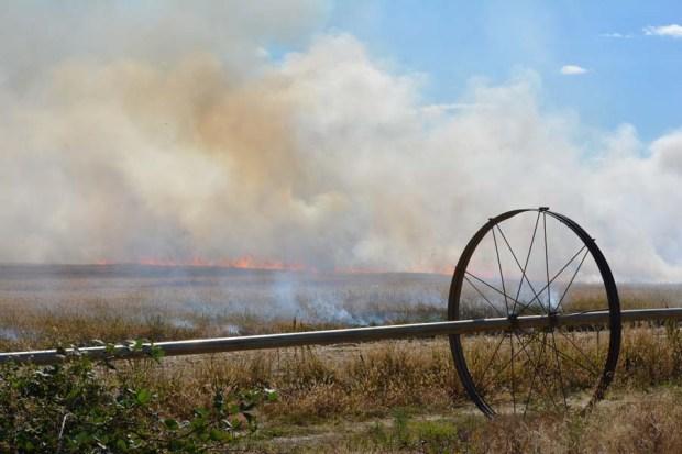 Field Burn Sept 2015 DSC_0778