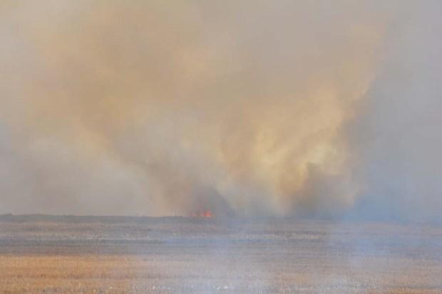 Field Burn Sept 2015 DSC_0779