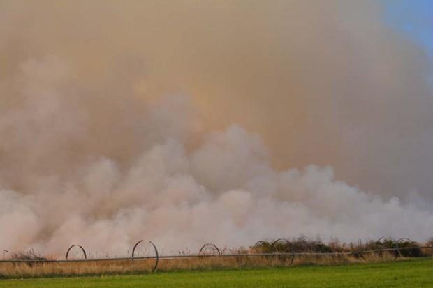 Field Burn Sept 2015 DSC_0797