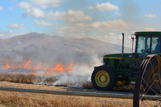 The start of field burning at Rogue Farms in Tygh Valley, Oregon.