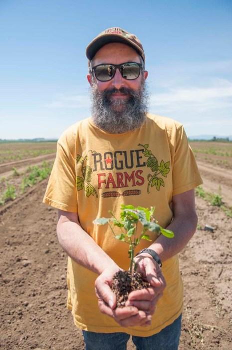 Planting Yaquina Hops16