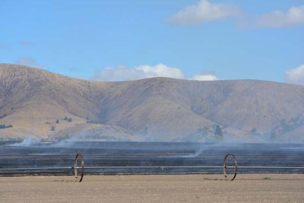 Tygh Ridge Field Burn Sept 2015 DSC_0818