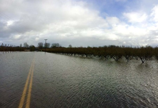 High water closed the road into Rogue Farms in at least two places.