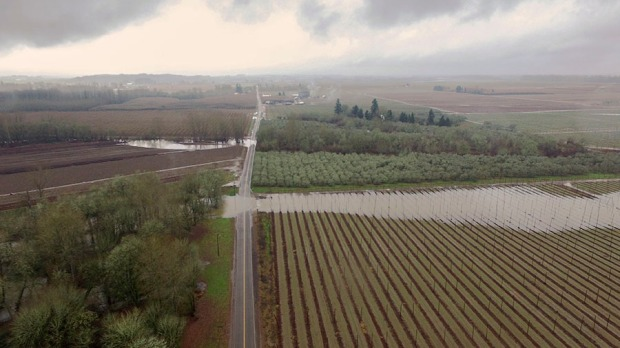 Flood waters pouring over Wigrich Road and into the Rogue Farms hopyard.