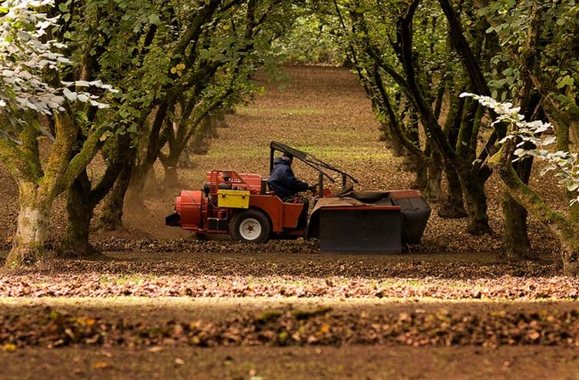 harvesting 2