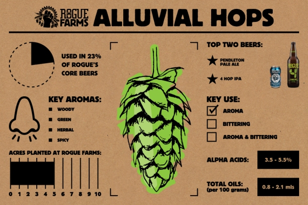 Alluvial Hops_Infographic