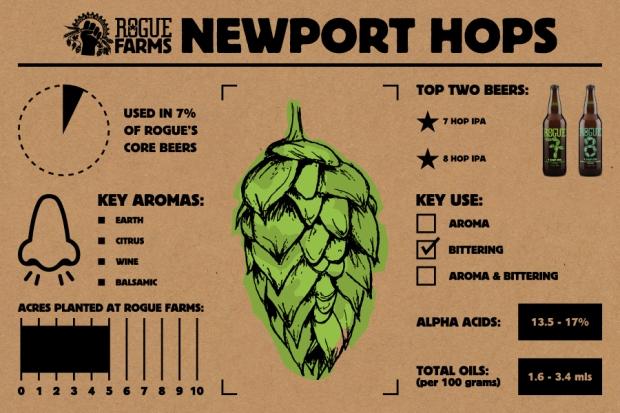 Newport Hops_Infographic