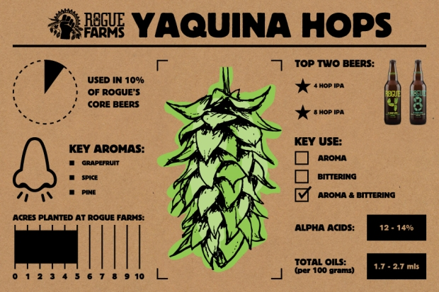 Yaquina Hops_Infographic