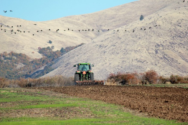 Plowing season at Rogue Farms in Tygh Valley.