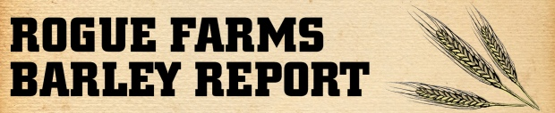 Barley Report Banner Medium