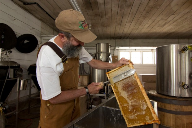 Rogue Brewmaster John Maier removing the wax seal from a honeycomb.