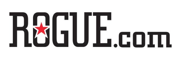 rogue-dotcom copy