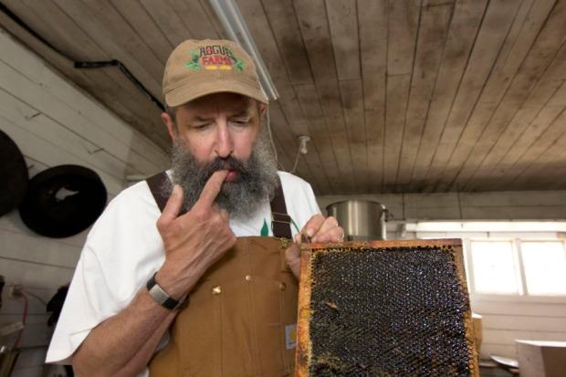 honey-harvest-john-maier-203_070114