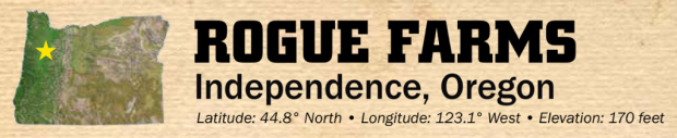 independence-banner